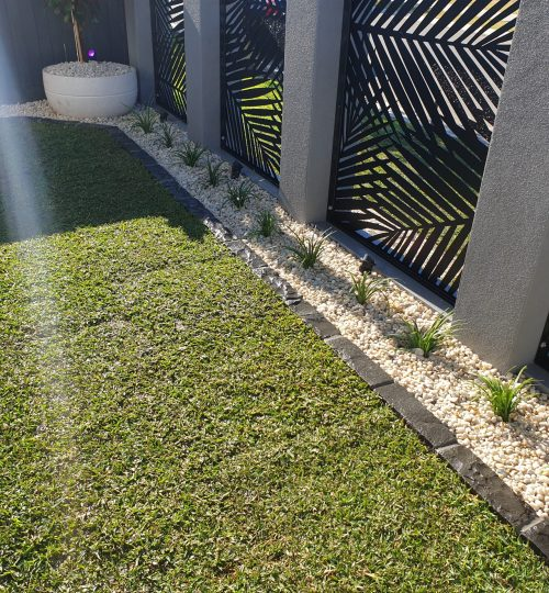 rock garden and feature plants