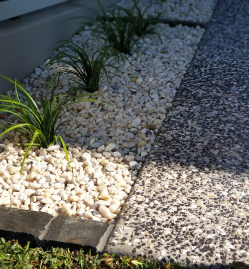 Garden Bed with low maintenance plants