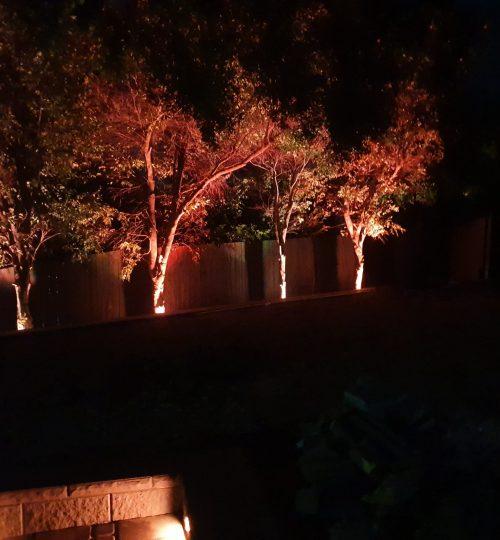 Strathpine Gardens Night time