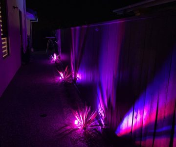 Fencing lit using smartphone controlled app